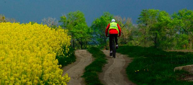 De juiste fietsbanden kiezen.Stadsfietsen