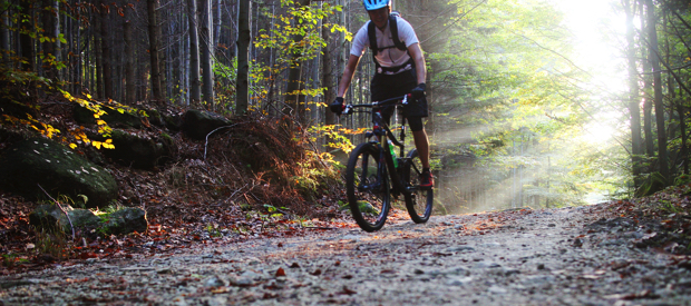 Mountainbike routes door de bossen.la roche-en-ardenne