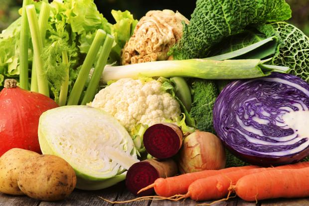 februari groenten
