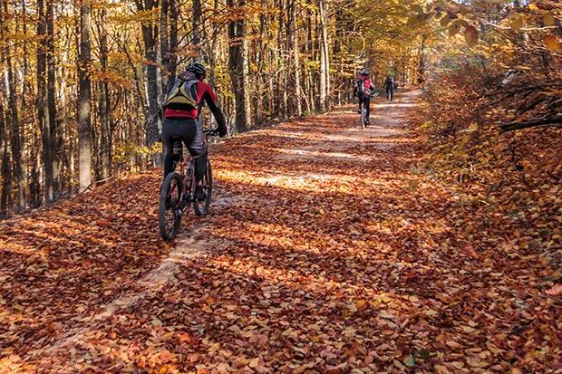 herfst fietsen